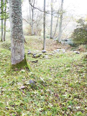 Væltningen og kanalstien i Snevret Skov, Esrum. Foto: Janne Aarre